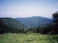 小仏城山から高尾山を望む